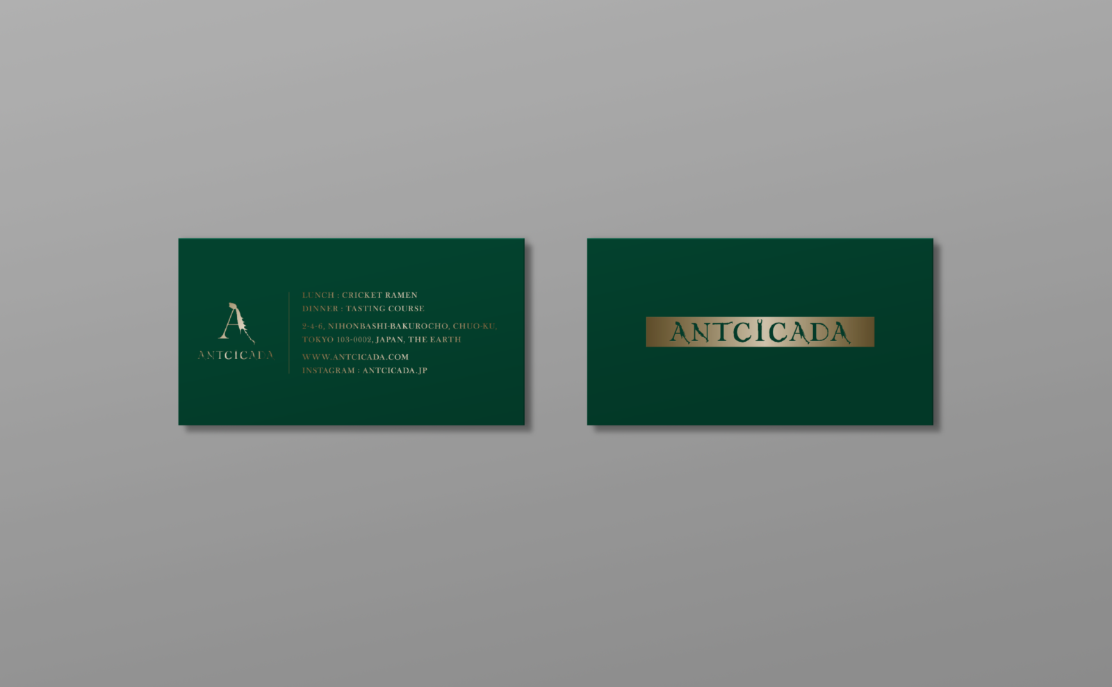 ANTCICADA__-4